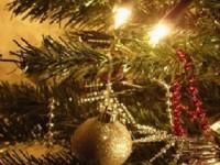 Поздравление Уполномоченного  по правам человека в Саратовской области с Новым годом и Рождеством!