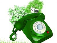 «Горячая линия» по вопросам экологии