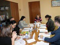 Члены Экспертного совета при Уполномоченном обсудили создание региональной стратегии в сфере развития и защиты прав человека
