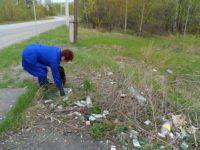 По обращениям граждан на «горячую линию» по экологии органами местного самоуправления принимаются меры  по благоустройству