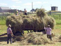 Жители с. Черкасское Вольского муниципального района смогут получать доплаты  к страховой пенсии за стаж работы в сельской местности