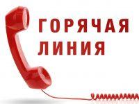 В Аппарате Уполномоченного организованы тематические «горячие линии» по вопросам защиты прав граждан